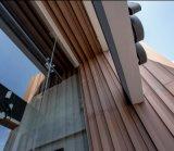 木製のプラスチック合成の壁のクラッディングWPCの装飾的な木ずり