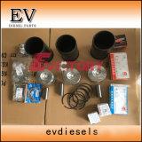 Laidong Ll380 Ll480 Wiederaufbauen-Überholungs-Installationssatz-Zylinderkopf-Dichtung-Kolbenring-Zwischenlage-Pleuelstange-Kurbelwelle-Peilung-Set