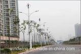 Turbine 200W Maglev vento verticale di asse (Maglev turbina di vento 200W-600W)