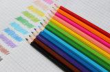 """[هلف سز] 3.5 """", 12 مصغّرة لون أقلام مدرسة قرطاسيّة"""