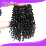 Black Womenのための最上質のCheap Price Human UnprocessedジェリーCurl Hair Styles