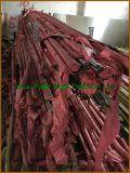 Barra rotonda dell'acciaio inossidabile di AISI 446