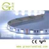 Ce flessibile RoHS di CC della striscia 24V di promozione 5m/Rolls SMD 5050 LED