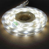 Luz 60LEDs de la cinta de SMD5050 RGB+W LED de China