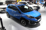 Vendas quente SUV High-End chineses--Gasoline1.5t Mt Q25 SUV Carro