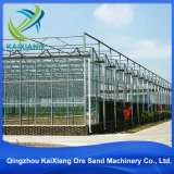 Invernadero comercial de la agricultura industrial moderna del bajo costo para la venta