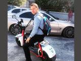Ecorider EEC 증명서 18 인치 두 배 시트와 미러 의 판매를 위한 2개의 바퀴 전기 스쿠터를 가진 뚱뚱한 타이어 Citycoco 스쿠터 Lt019