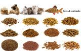 La Chine usine fabricant chien chat Poisson Ligne de traitement de l'extrudeuse d'alimentation