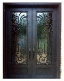 Двойная дверь фронта ковки чугуна всех сбываний изготовленный на заказ