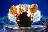 Комплект щетки состава раковины моря волос фабрики запатентованный источником искусственный синтетический