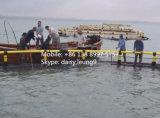 Cage de flottement circulaire et carrée de pisciculture de Chine