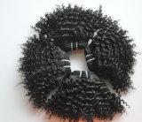 10A 비꼬인 꼬부라진 사람의 모발 연장 자연적인 브라질 Remy Virgin 머리 Lbh 005