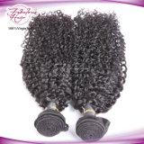 Indian Kanekalon Braid Hair Kinky Curly Remy Cabelo humano Weave