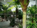 3.5 Пальма напольной пользы метра искусственная