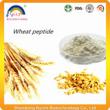 Polvo soluble en agua de la proteína del trigo de Oligopeptides del trigo del 100%