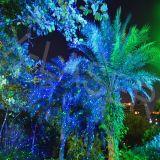 Licht van de Laser van de Tuin van de Glimworm van Blue&Green het Bewegende, het Licht van de Laser van het Gazon van het Landschap, de Lichte Projector van de Glimworm van de Zaligheid