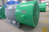 генератор постоянного магнита 500kw в низкоскоростном