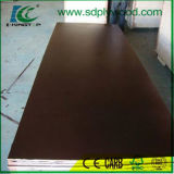 Poplar /Hardwood/Combi /Birch Core Shuttering Plywood/Marine Plywood for Construction