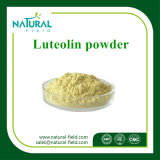 HPLC CAS著ルテオリン80% 98%: 491-70-3