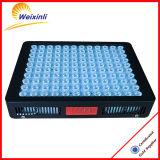 600W LED는 원예식물 및 의학 플랜트를 위해 가볍게 증가한다