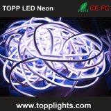 Hoogste LEIDENE van de Kwaliteit 12V 24V Neonlichten voor Motorfietsen
