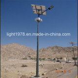 30W 36W 60W 80W ZonneLamp voor de Verlichting van de Straat