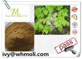 Het natuurlijke Hoornen Onkruid van de Geit, Epimedium Uittreksel, Epimedium Brm