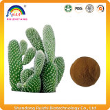 Het Poeder van het Uittreksel van de Cactus van het Product van de gezondheid