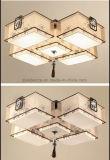 Het moderne Eenvoudige Vierkante Licht van de Tegenhanger voor Woonkamer