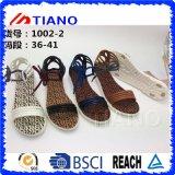 De Zomer Trendy Vlakke Sandals van de Vrouwen van de Schoenen van de manier (TNK50040)