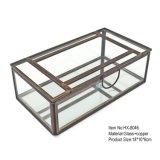 Горячая продавая квадратная бронзовая стеклянная коробка ювелирных изделий сделанная в фабрике Китая