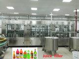 De kleinschalige Volledige Bottelende Kant en klare Fabriek van het Drinkwater