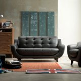 Divano di cuoio moderno del piccolo divano di seta del salone dell'appartamento