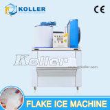 machine de glace reconnue par CE de l'éclaille 1ton/Day avec le coffre d'entreposage dans la glace
