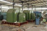 De HydroGenerator van de turbine