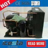 Copeland Scroll Compressor da unidade de condensação numa sala fria