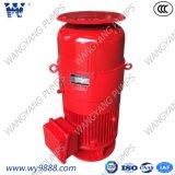Асинхронный двигатель Пол-Вала вертикального мотора пожарного насоса турбины вертикальный