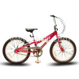 Bicyclette/vélo normaux (WTB102005)