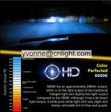55W에 의하여 숨겨지는 헤드라이트 주간 야간 항행등 크세논 전구 안개 램프 H1 H3 H7 H11 H8 H9 H27 9005 9006 880 881 D2r D2s Hb1 Hb3 Hb4 Hb5 H4 5202 H16 LED 차 램프
