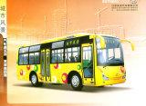 Bus lungo della città (ZGT6803DH)
