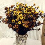 Festa nuziale della casa del fiore dell'orchidea di farfalla del fiore artificiale decorativa