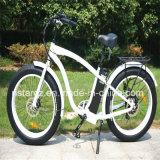 E-Schleife-fetter Reifen-elektrisches Fahrrad begrüßt (RSEB-505)