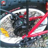 En15194 продают велосипед оптом батареи лития педали велосипеда автошины миниого Bike города складчатости 350W электрического тучный складной