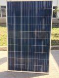 Poly Panneau solaire 260W pour le système d'alimentation de la grille