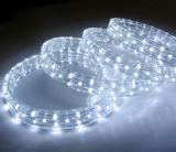 Flexible de 4 fils à la poursuite de la corde de Flex lumière LED 220V LED RVB de corde