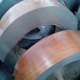 Du grain du bois pour le stockage en acier revêtu de l'usine