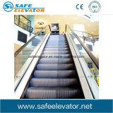 Escada rolante confortável interna