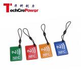 DJ27 Waterproof o Tag personalizado microplaqueta do cartão de NFC Felica RFID Exopy