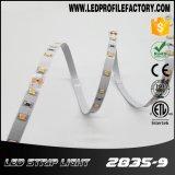 2835 12V/24V LED étanche Bande souple pour l'éclairage extérieur