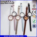 Orologio casuale classico delle signore del quarzo di modo (Wy-043A)
